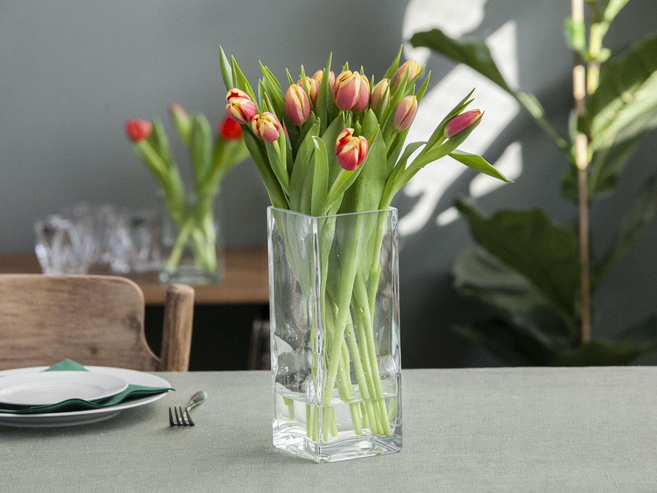Wazon szklany Edwanex 10x25 cm