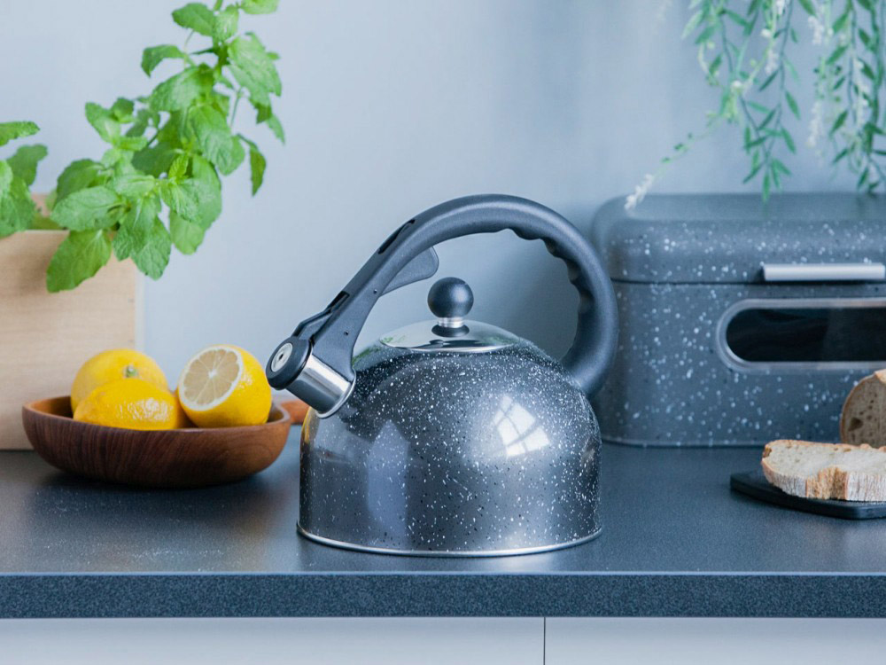 Stainless steel whistling kettle Rock 2,5l.
