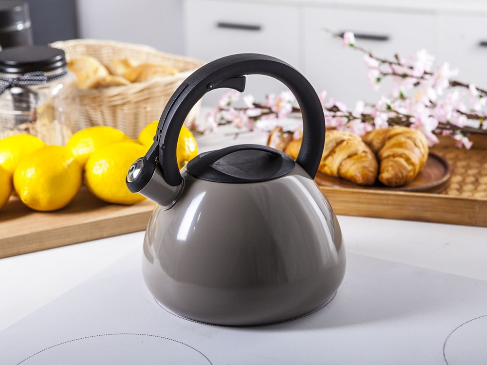Stainless steel whistling kettle Talus taupe 2,5l.