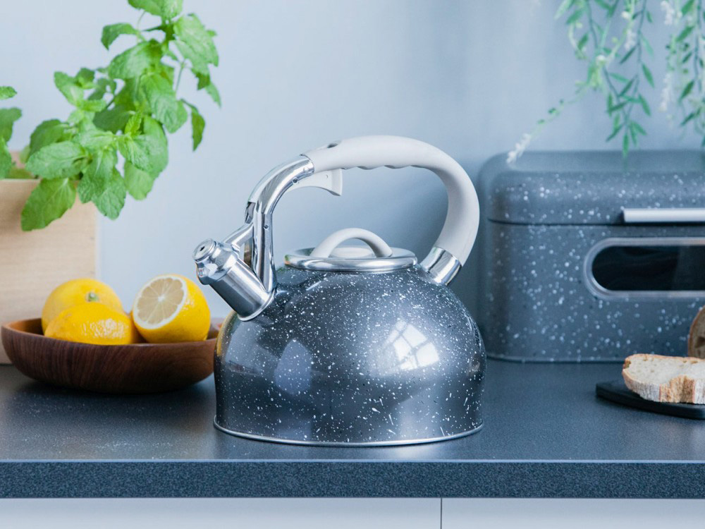 Stainless steel whistling kettle Rock 3,0l.